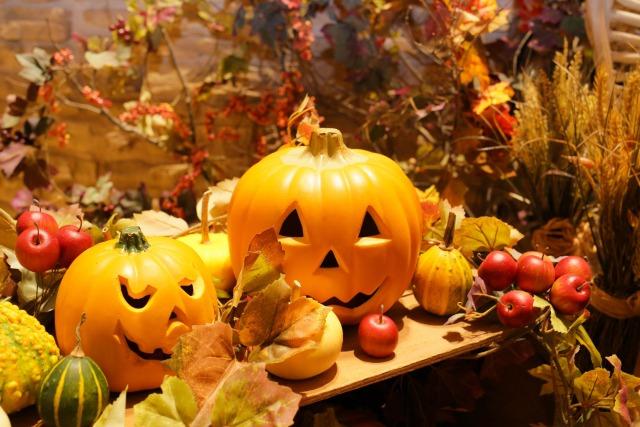 学童教室「秋」の無料キャンペーン